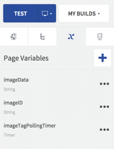 Page Variables