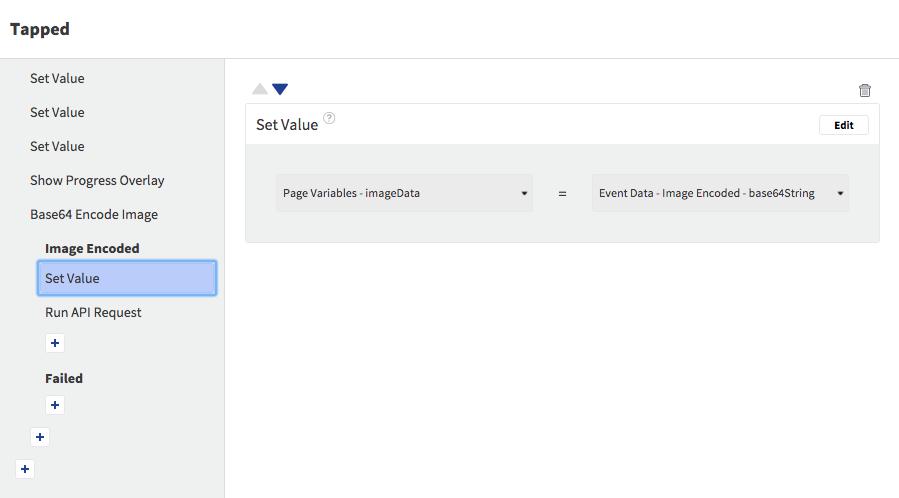 Set imageData Page Variable