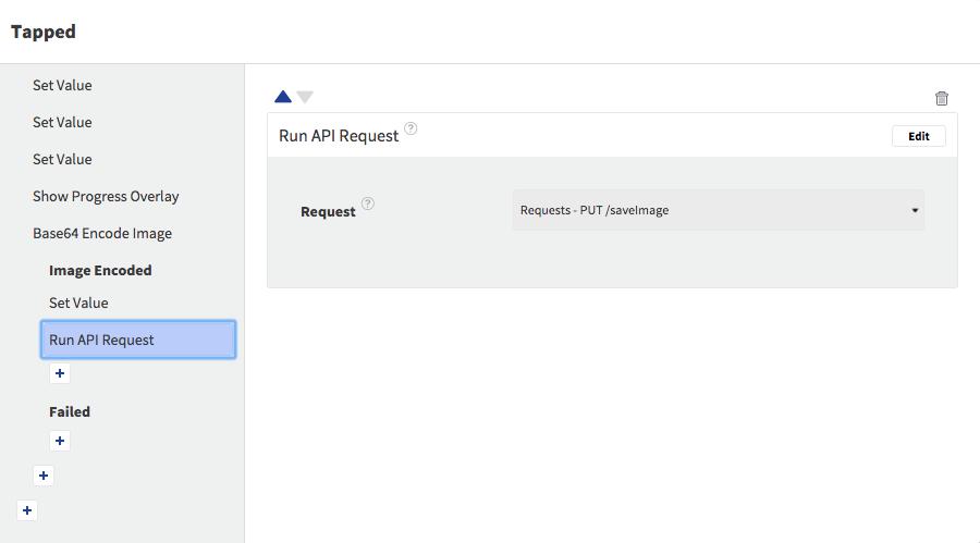 Run API Request